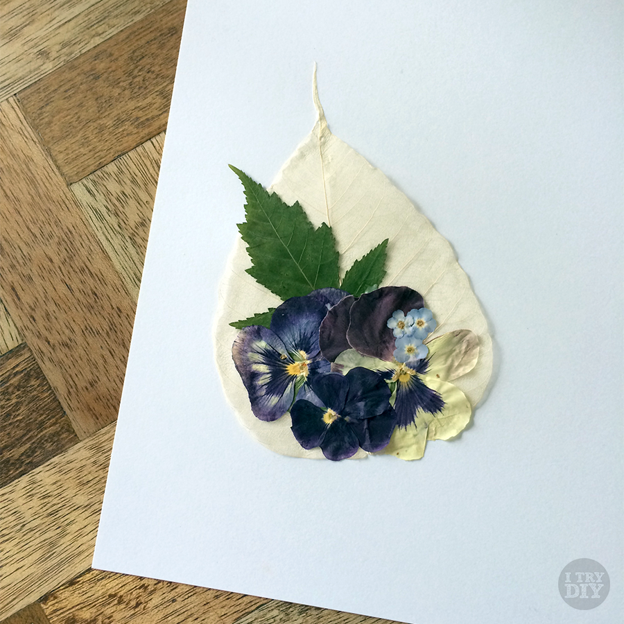 Mikko Sumulong | A Newfound Love for Flowers
